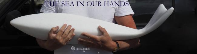 THE SEA IN OUR HANDS (2017)